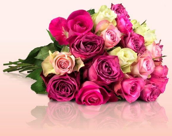 20 pastellfarbene Rosen für 18€ via Miflora