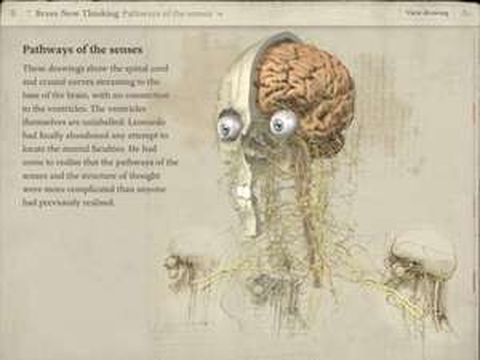 [iOS/iPad] Leonardo da Vinci - Anatomy