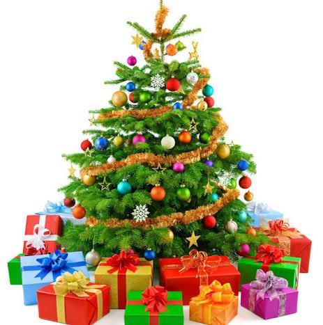 weihnachtsbaum nordmanntanne 110 150 cm nur 11 99 bei kaufland evtl bundesweit. Black Bedroom Furniture Sets. Home Design Ideas