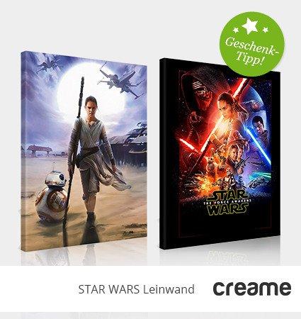 Star Wars Leinwand 20x30 5,99€ inkl. Versand