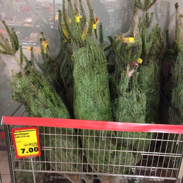 [Penny] Nordmanntanne / Weihnachtsbaum 53% billiger [teilw. Bundesweit]