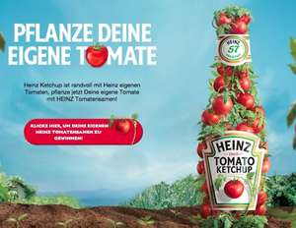 Heinz Ketchup Tomatensamen gratis