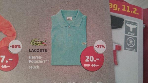 Penny Lacoste Herren poloshirt für 20€