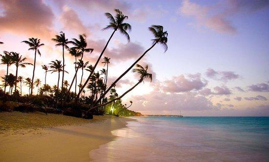 [Last Minute] Hin- und Rückflug von Brüssel in die Dominikanische Republik (Punta Cana) für 283€, z.B. 6. - 16. März