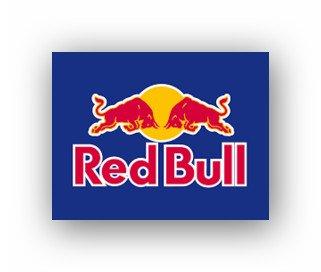 Netto Rot Gelb:Red Bull 12 mal 0,25 Liter 9,99 Euro