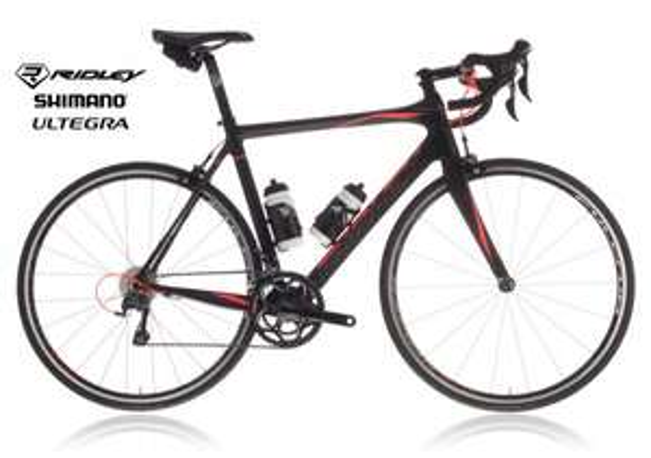 Profirennrad zum Amateurpreis Ridley Fenix Carbon