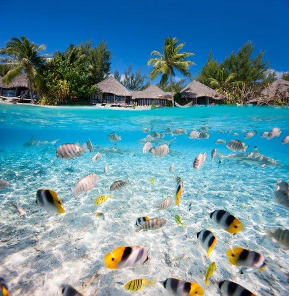 [April - Juni, August - Januar] Hin- und Rückflüge von Paris nach Mahé (Seychellen) für 498€