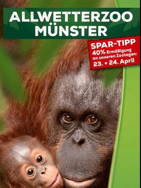 [Münster] Allwetterzoo: 23.+24.4. / 25.+26.6. / 27.+28.8 Eintritt um 40% reduziert