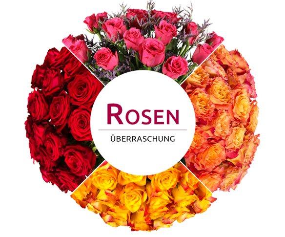 Rosenüberraschung für 11,11€ @ Miflora