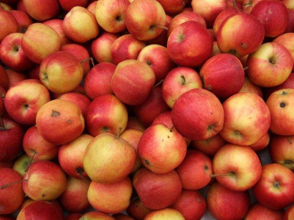 [reebate] 0,30 € Rabatt auf einen Apfel