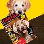 """2 Ausgaben Zeitschrift """" Der Hund """" kostenlos"""