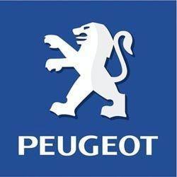 Peugeot Altea verchromt