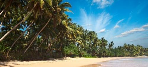 Reise: 1 Woche Jamaica für 480€ p.P. ab Frankfurt (Flug + Hotel)