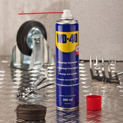 Multifunktions-Öl  WD-40 / 300-ml-Dose @ALDI Nord  für 2,59€ (Ab Donnerstag 01.03)