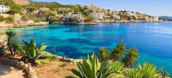 Mallorca Hin und Zurück für 69€ (Juni-August)