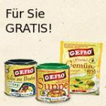 Gefro Würze/Brühe Testpaket