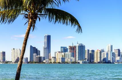 [August - November] Hin- und Rückflüge von Düsseldorf nach Miami für 315€ mit Lufthansa