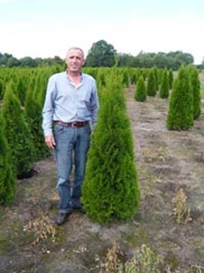 Thuja Smaragd in 140-160cm für 26,90€pro Stück + VSK @ Baumschule NewGarden - z.B. 10 Pflanzen inkl VSK für 281,10€