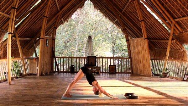Kostenloser Online Yoga Kurs: statt 35€ für 0€!
