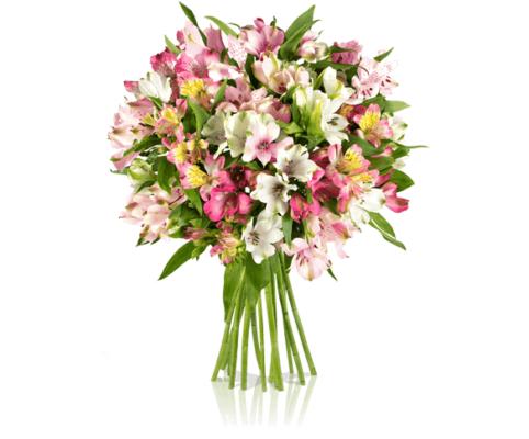 """[Miflora] """"Pink Paisley"""" Strauß mit 15 Alstromerien"""