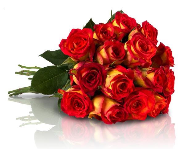 """Blumenstraus """"Joyful Yellow"""" mit 20 orangefarbenen Rosen für 16,80 EUR"""