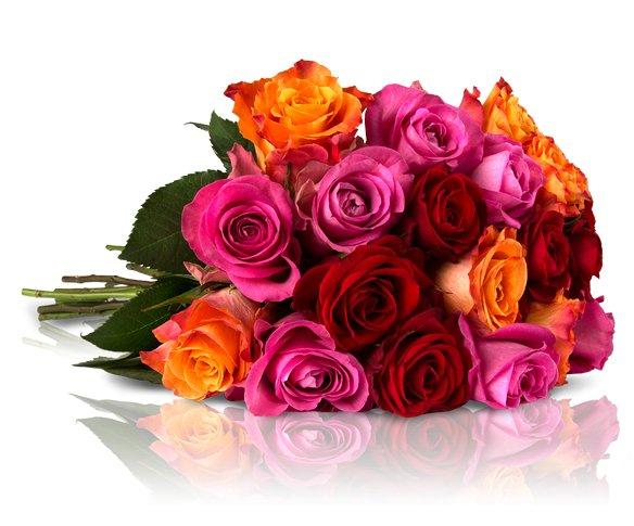 """Blumenarrangement """"Shiny Rainbow"""" mit 28 bunten Rosen für 18,90€ bei miflora *UPDATE*"""