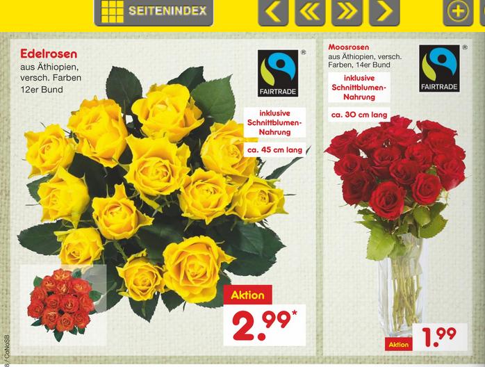 (Netto MD ab 19.09 ) 12 / 14 Fairtrade Rosen 45cm /30cm lang versch. farben im Bund 2,99/1,99€