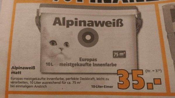 Alpina weiss (mit Katze)  bei Globus Baumarkt