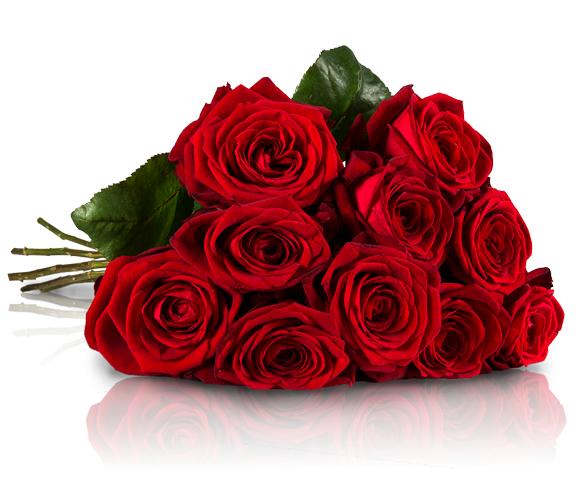 Miflora Blumenstrauß für 4,44€ + 4,95€ Versand