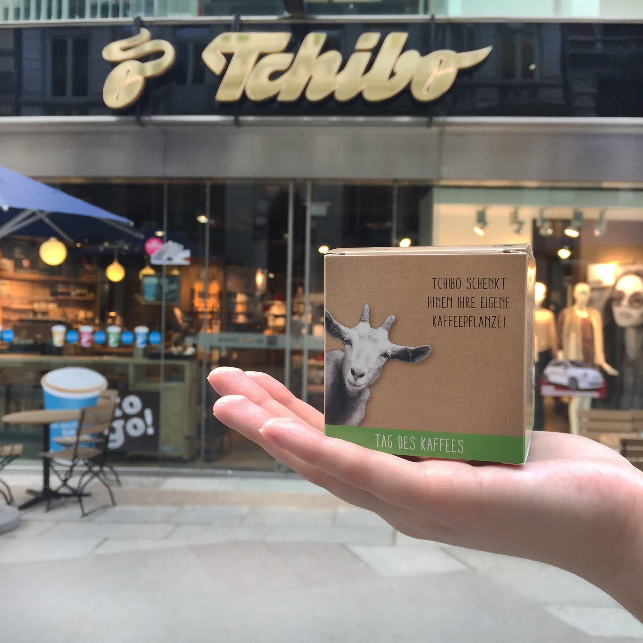 kostenlose Kaffeepflanze am 01.10. bei Tchibo