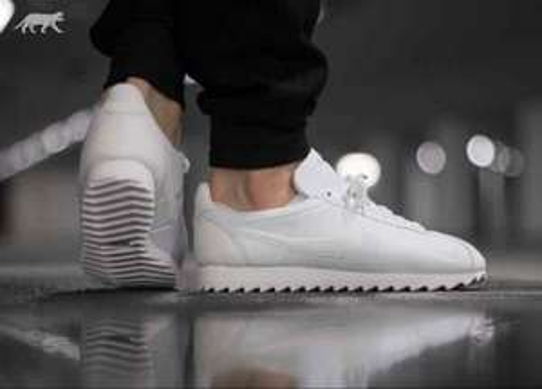 [Ochtrup] Nike Cortez Shark Low White