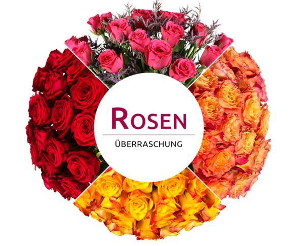Rosenüberraschung bei Miflora: 28 Rosen in pink, gelb oder bunt für 18,90€