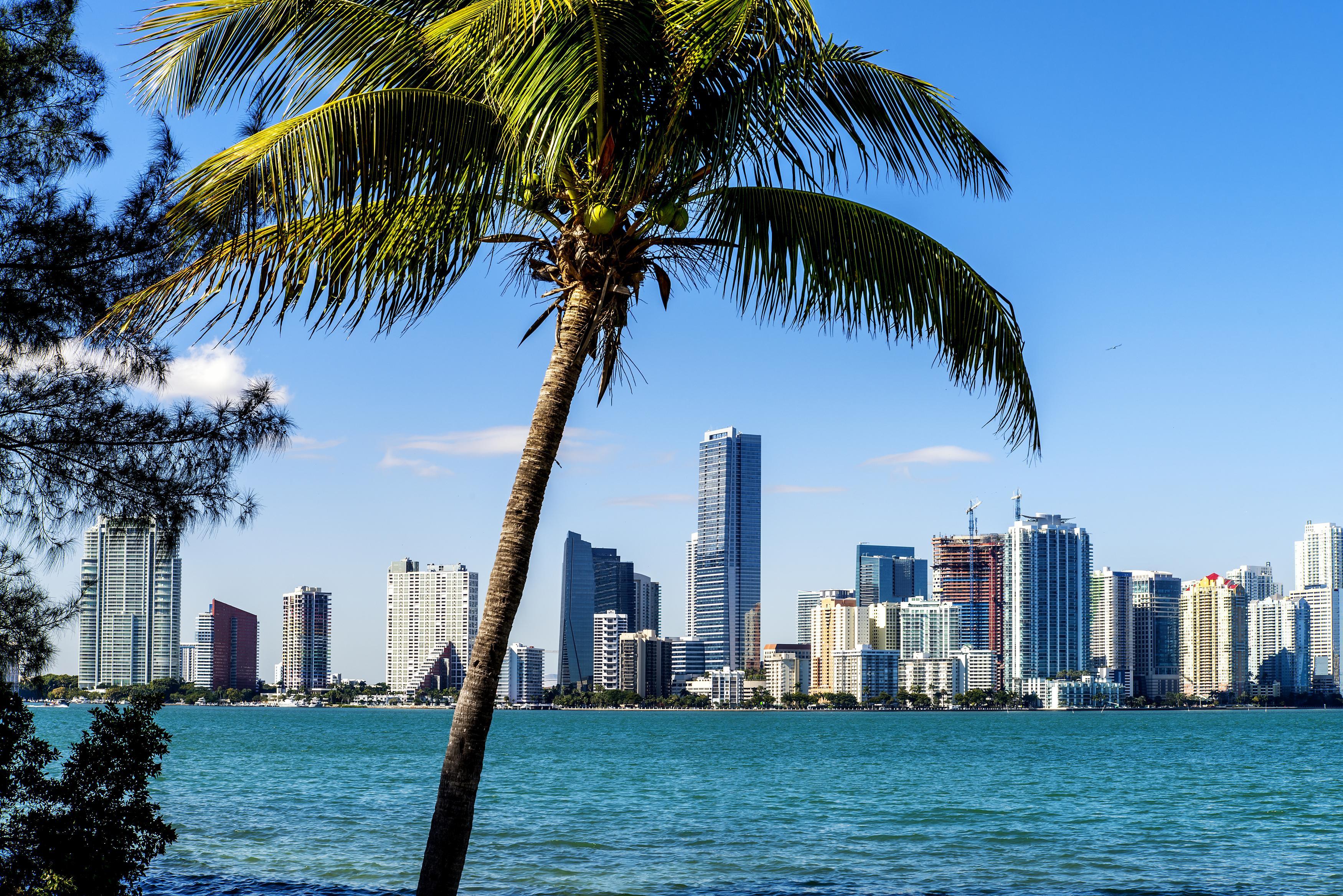 Miami August - Oktober ab Düsseldorf mit Lufthansa für 296,25€