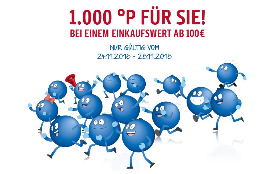 [Real] Zusätzlich 1000 Payback Punkte ab 100€ Einkauf