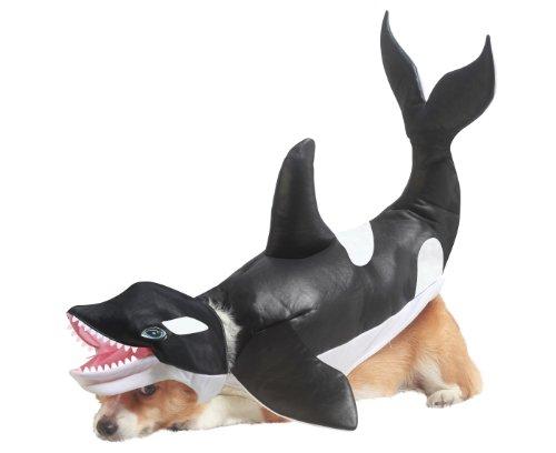 """Seit 11.11. ist schon wieder Karneval: Hundekostüm """"Orka"""" für 8 statt 34 € [Amazon prime]"""