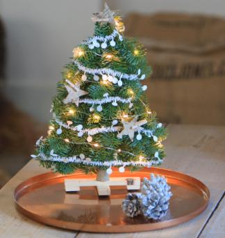 Advent, Advent: ein Weihnachtsbaum per Post für 11,95€ von [Bloompost]