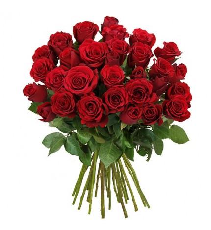Blume Ideal: 28 rote Rosen --> 14,99 € statt 29,99 € / zzgl. 4,95 € VSK