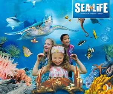 Mit DKB Live kostenlos in diverse Aquarien in Dtl., z.B. Sealife, 20.2. - 26.2.2017