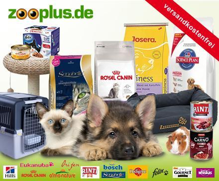 51% Rabatt bei zooplus durch DailyDeal Gutschein (9,90 € für 20,00 €)
