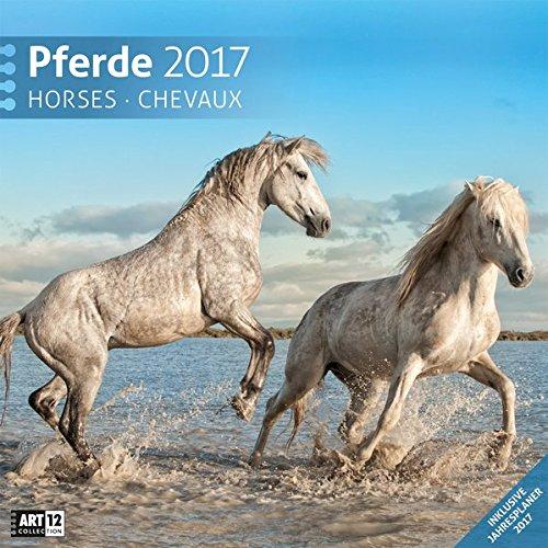 [Amazon] Pferdekalender 2017 30x30cm