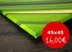 Leinwand 45x45 nur 16,00 Euro statt 41,95 Euro - pixelfotoexpress