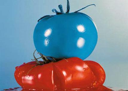 Blue Tomato Rabatt + 3for2 Aktion auch auf Sale und Outlet