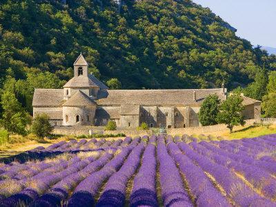 Reise: 1 Woche Provence (Südfrankreich) ab Weeze (Flug, Mietwagen, Hotel) 301,- € bei 2 P. - bei Hostel-Unterkunft nur 212,- € (in den Sommerferien Juli+August)