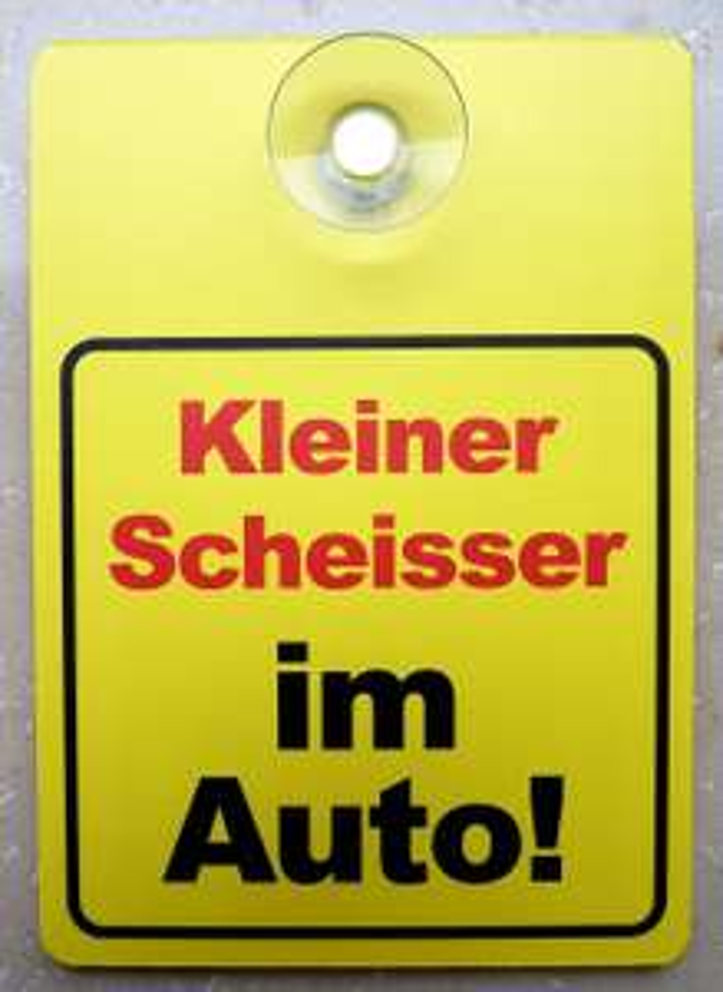 wetterfestes PVC-Schild für Innenraumaufhübschung des eigenen Vehikels bei eBay für schlappe 4,49€