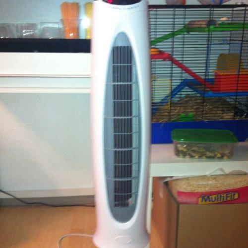 Ventilator bei Penny