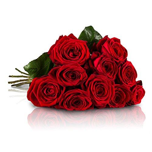 [Amazon.de] MIFLORA Blumenstrauß mit 10 Red Naomi Rosen mit XXL-Blütenköpfen