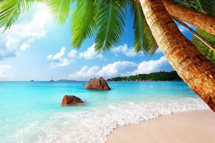 "(lturfly.com) Last Minute Hin- & Rückflug Direktflüge nach Punta Cana (Dominikanische Republik) inkl. 23kg Gepäck (""Gabelflug"" ab München schon ab 275€!!!)"