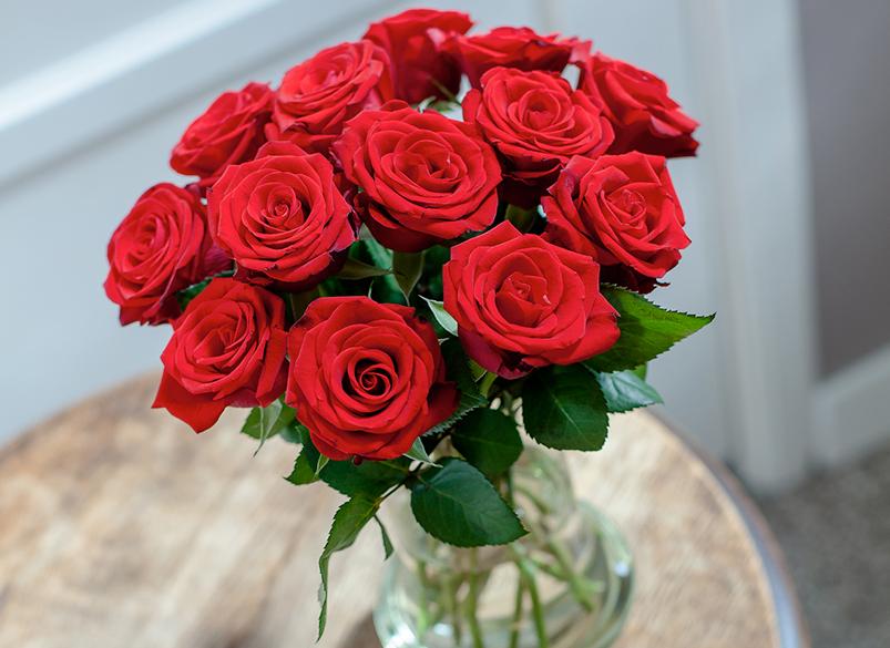 11 rote Rosen zum Valentinstag morgen für 8,95€ bei [Bloompost]