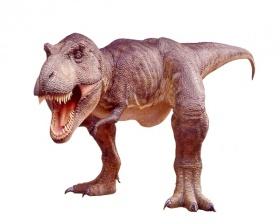 """(Rakuten) Dinosaurier Tyrannosaurus """"sehr groß"""" + 34.868€ in Superpunkten"""