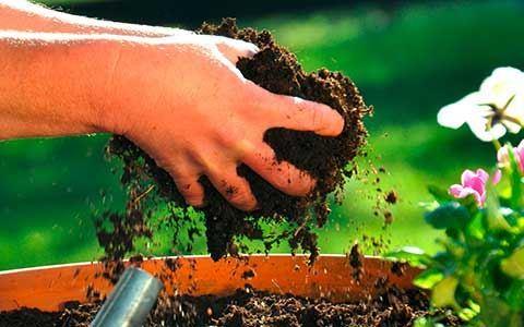 Gartenartikel bei Ebay : 10% auf die Kategorie Garten & Terrasse bei Bezahlung mit Paypal (bis zum 12.04.2017) Der Code: PGARTEN17